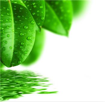 ANIM<sup>®</sup> T-60化学除油剂